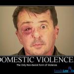 dv-non-sexist-violence