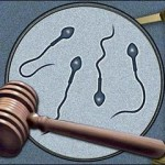 sperm-donor-family-law-judgment