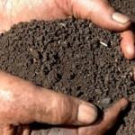 farming-soil
