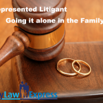 self-represented-litigant-alone-in-family-court