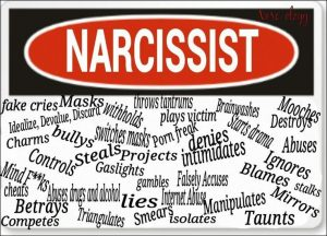 Narcissistic Personality Disorder in the Family Court