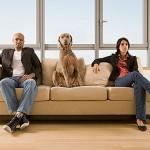 pet-custody