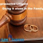 self-represented-litigant-alone-in-family-court
